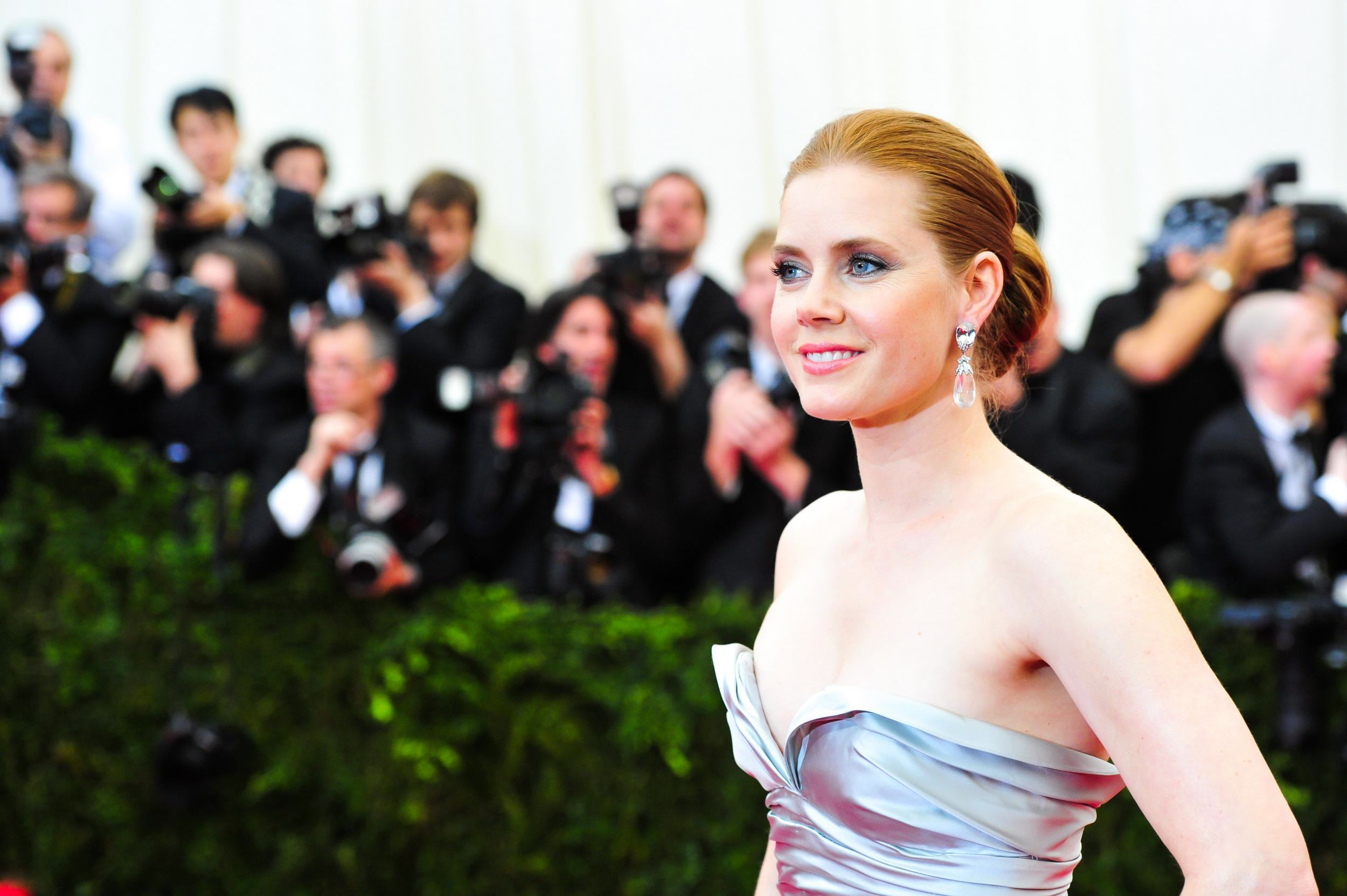 Amy Adams Met Gala 2014
